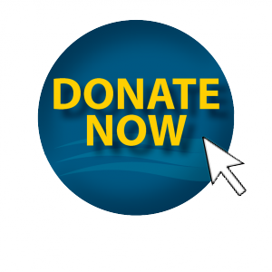 Donate Now Button wo_shadow